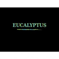 DEA Flavor - Aroma Eucalyptus