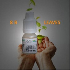 Flavourland - 8B Leaves senza nicotina